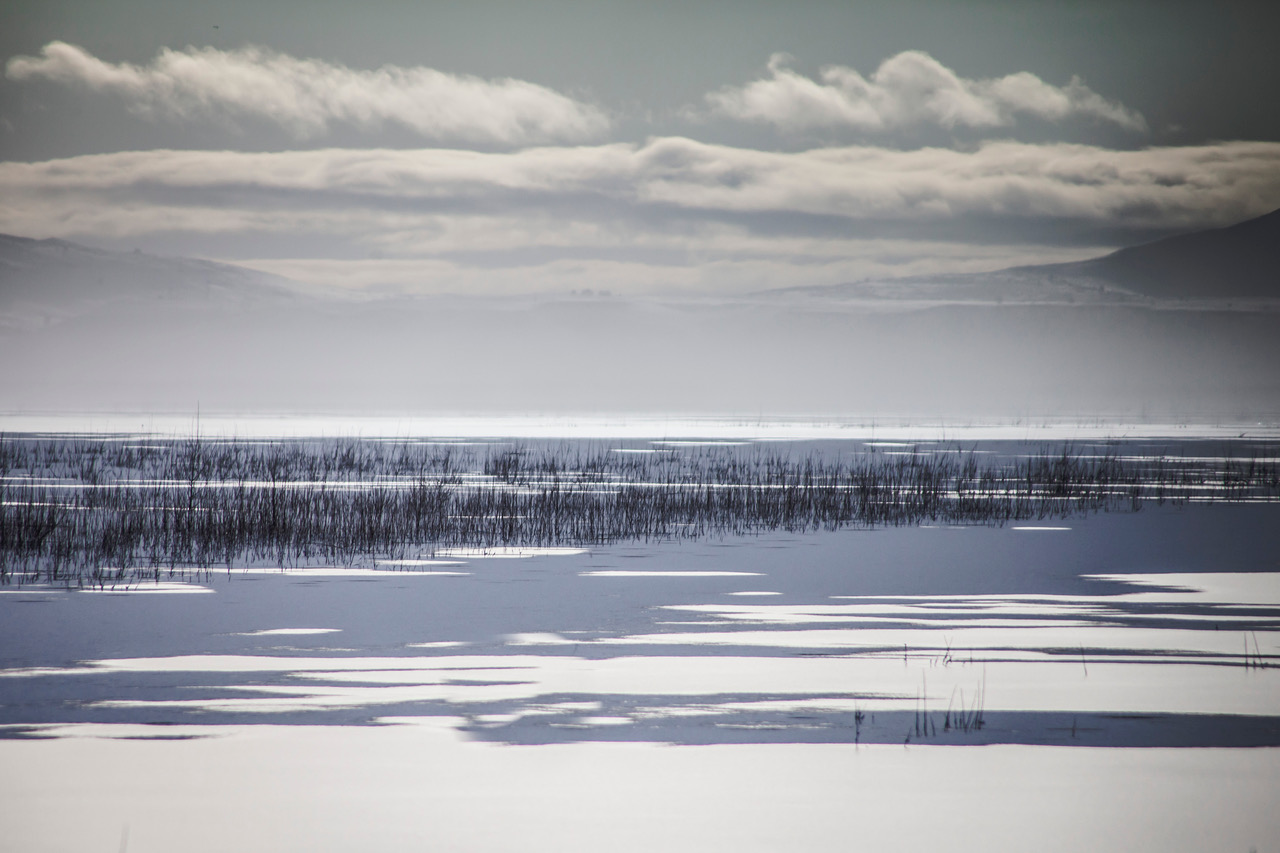 Jim Moorehead: Tulelake Winter